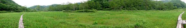 写真2 沼ノ原湿原の風景(パノラマ撮影)