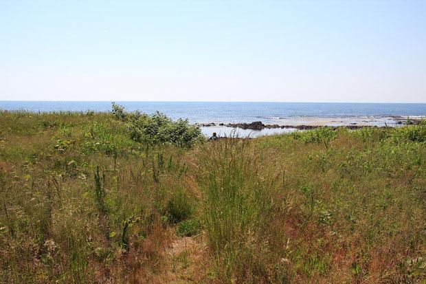 自生地の海岸への入口。 期待しながら海岸に向かっった。 5月とは思えない猛烈な暑さだった!