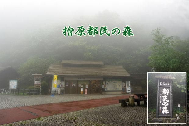 檜原都民の森の入口 雨に煙っていた  2008.08.17 東京都