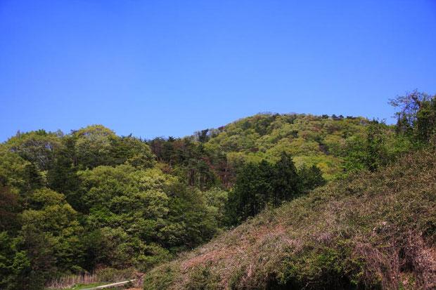 里山は新緑が輝いていた  2015.04.26 栃木県