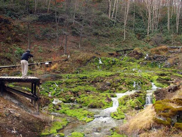 湧出口がある最奥部の窪地。「穴地獄」と呼ばれる。