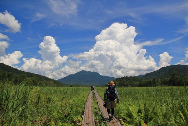 行く手には、燧ヶ岳。 あのお山の麓まで湿原が続いているんだねえ... 発達中の積乱雲が気になる