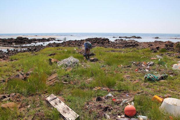 事前調査で漂着物が多いとは知っていたが、ここまで多いとは。 清掃活動も行われているようだが...
