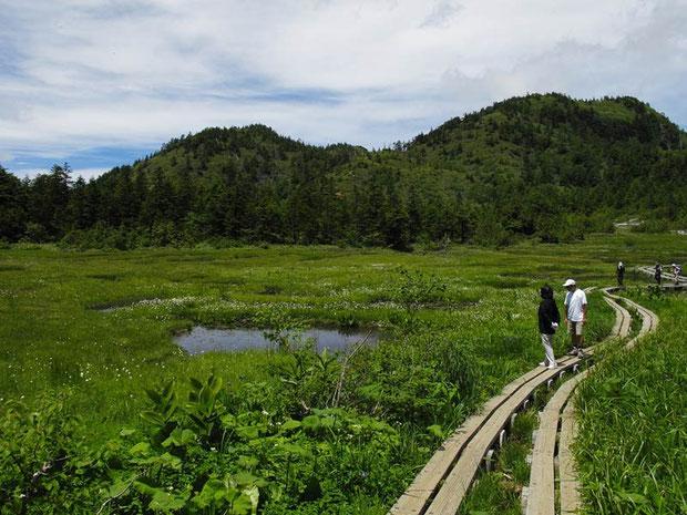 四十八池と志賀山  湿原には大小約60の池塘があるそうです