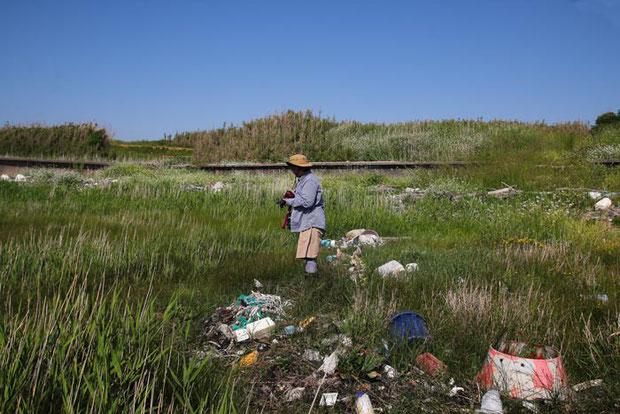 これほど大量の廃棄物の中で花を探したことはない。 思わず立ちすくむ。