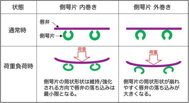 図1 側萼片の巻く方向による強度の違い