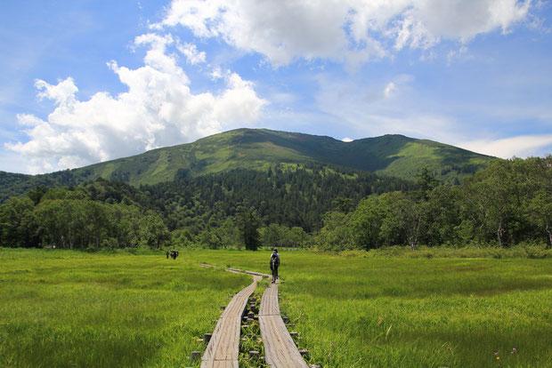 振り返れば、至仏山。 去年、あのお山の途中まで登ったんだねえ...