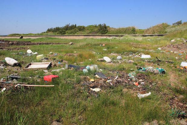 「プラスチックは腐らない」当たり前の事だが、それを強く再認識させられる光景だった