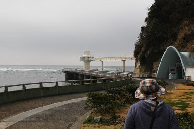 勝浦海中公園 30余年ぶりに訪れた