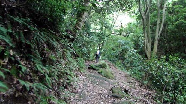 山寺への登山道