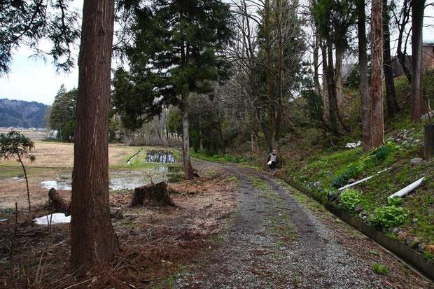 わずかに残された湿原への入口