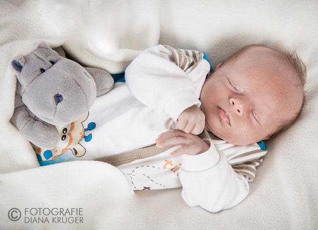 Babyfotos Hohenstein-Ernstthal