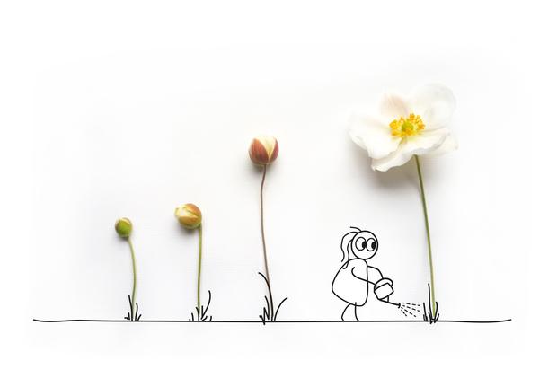 Storytelling, Illustration, Infografik