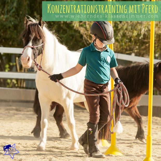 Wieherndes Klassenzimmer: Mit KKP zum Lernerfolg! Konzentrationstraining mit Pferd für Kinder! So verbessern Kinder ihre Konzentrationsfähigkeit mit Pferd.