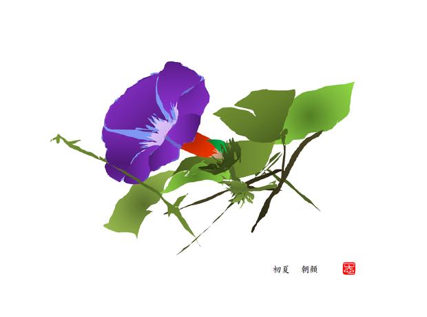 朝顔 2016/06/28制作