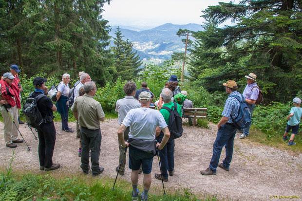 Naturpark-Rangerin Heidun Zeus zur Frage der Offenhaltung von solchen herrlichen Ausblicken