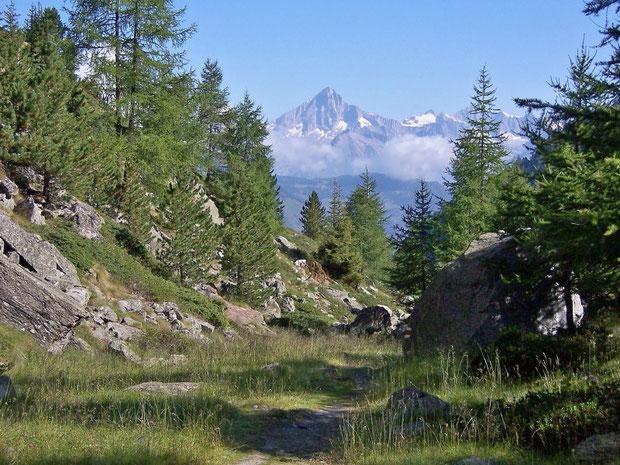 Gebirgslandschaft beim Riedgletscher VS
