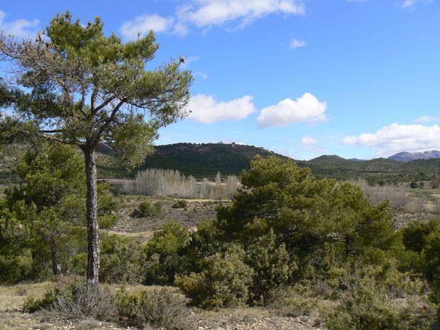 Sierra de Segura