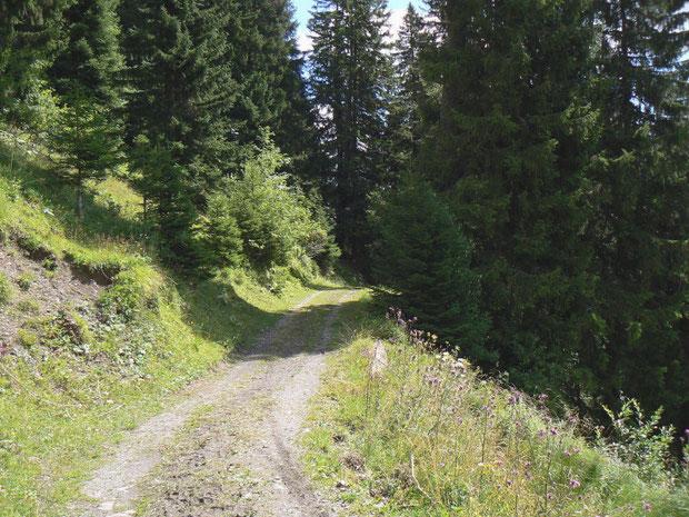 Aufstieg zur Montagne de Fecon