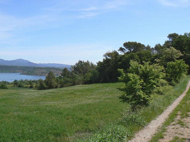 Landwirtschaftsgebiet am Lac du Salagou