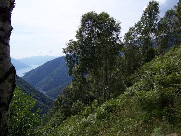 Weg von der  Alpe Stavello zur Alpe Odro
