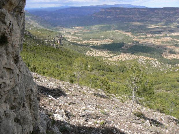 Reserva Nacional de la Muela de las Cortes