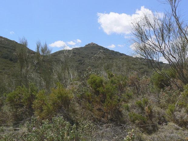 Der Berg mit der Ermita de Monteagud