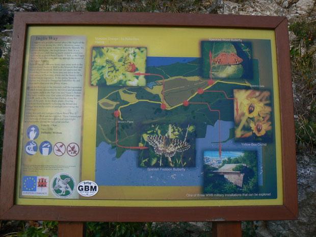 Tafel mit Beschreibungen zu Flora und Fauna