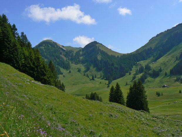 Gros Mont 1365 m
