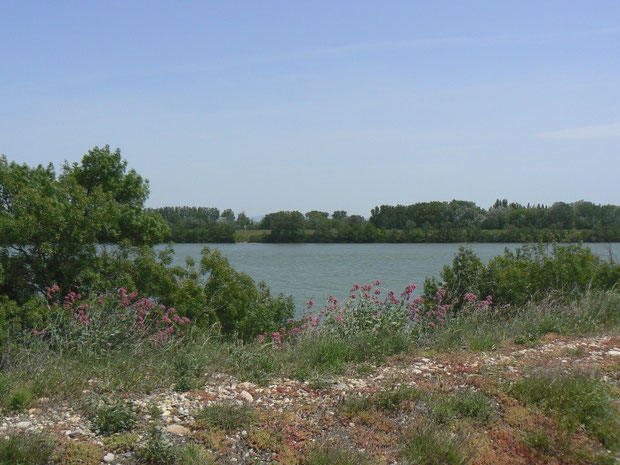 Rhònekanal bei Avignon