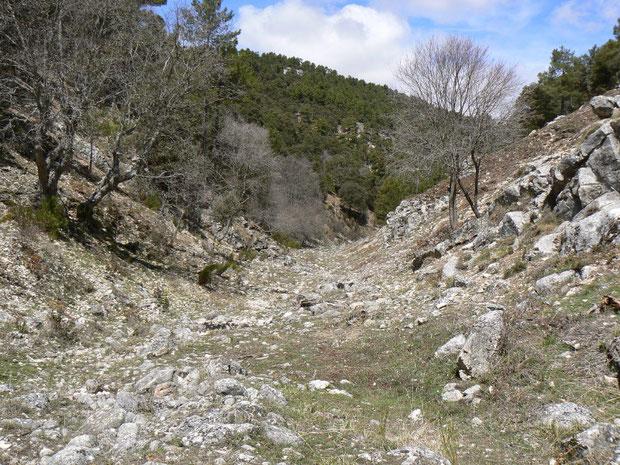 Barranco Ciervo