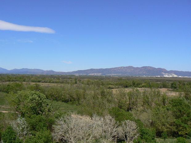 Katalonien, Roses, Empuriabrava, Parc Natural dels Aiguamolls de l'Empordà