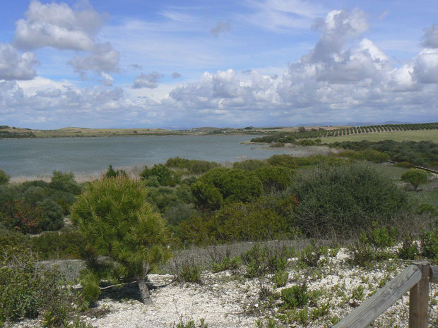 Reserva Natural Laguna de Medina