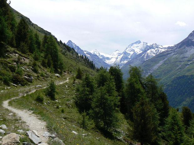Weg zur Barneuza Alpage