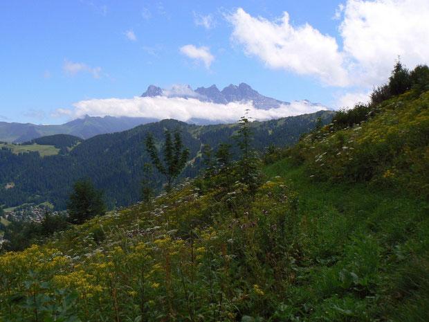 Aussicht von der Montagne de Fecon auf die Dents du Midi
