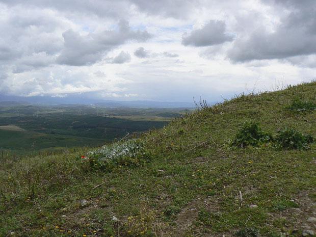 auf einem Hügel oberhalb des Dörfchens Sidonia