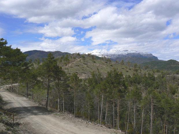 vom Valle de Ansó zum Valle de Hecho, Collada de Terit