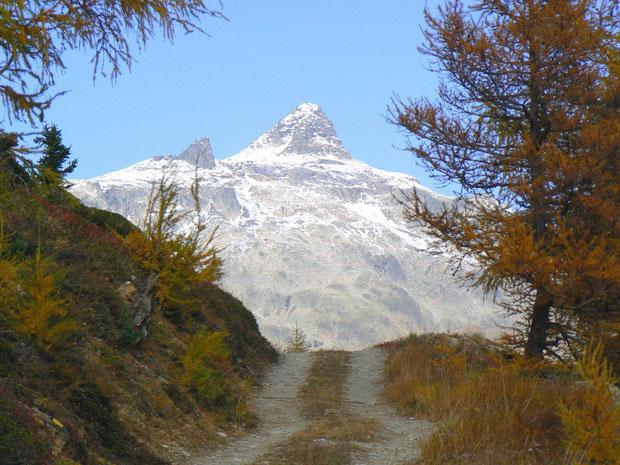 Hockenhorn 3293 m