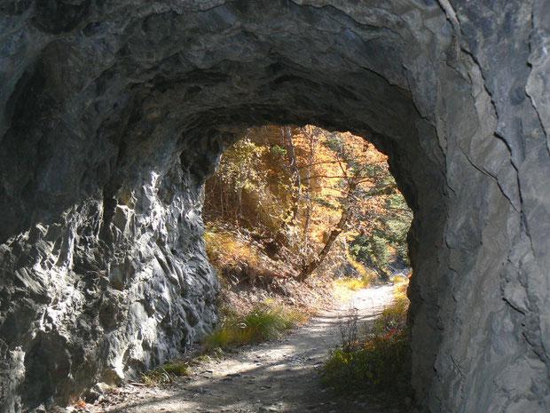 Eines von vielen Tunnels