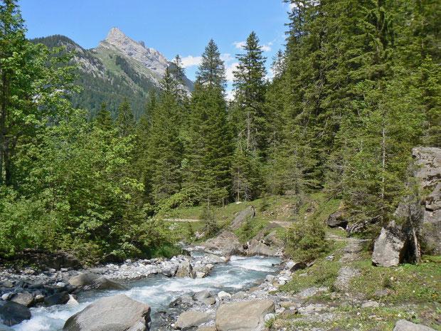 Flusstal im Vallon de Nant VD