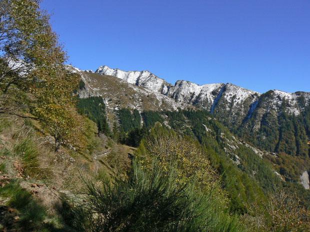Monti di Colla