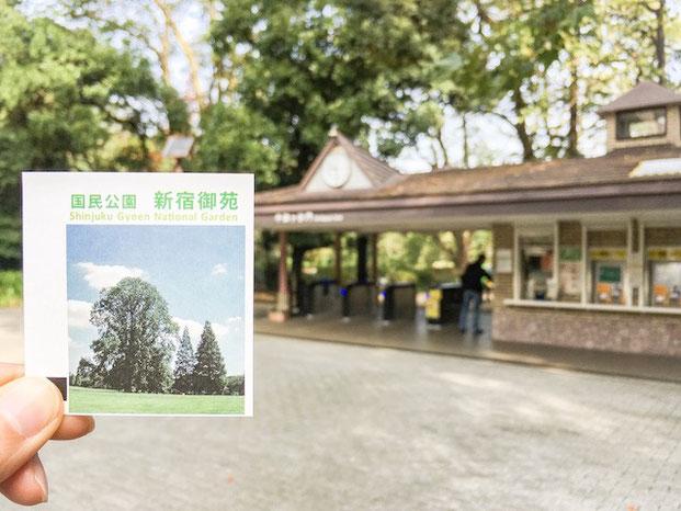 新宿区 新宿御苑 出張撮影 公園フォト 家族写真 カメラマン 料金安い