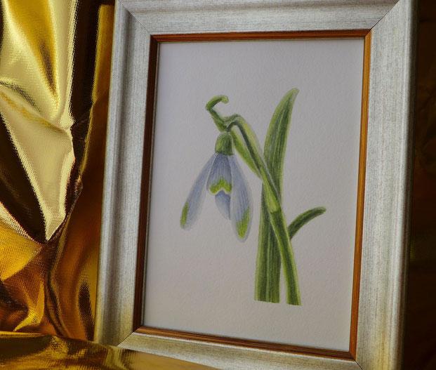 """""""Ein Jahr mit Blumen"""" - Schneeglöckchen malen - DIY-Projekt"""
