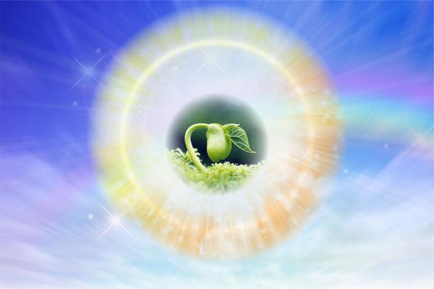 内なる癒しと新しい創造