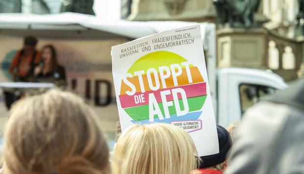 Juden in der AfD, Arbeitskreis, Alternative für Deutschland