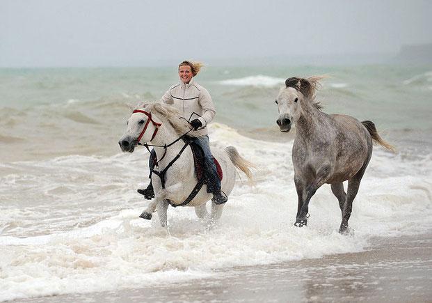 лошади и люди Светланы Петровой-11