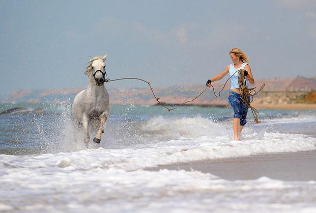 лошади и люди Светланы Петровой-13