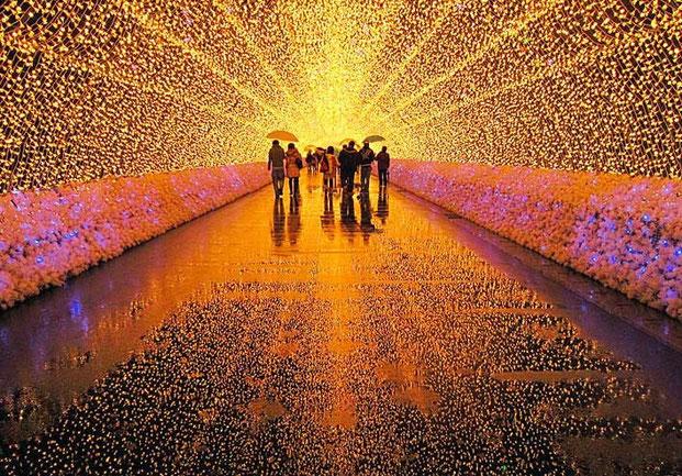 световой сад в японии