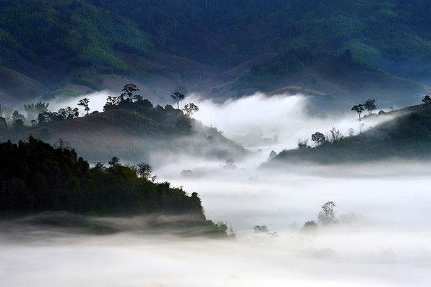 Удивительные фотографии природы-4