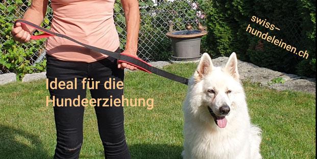 Swiss-Hundeleinen, Hundeleine, Hundeleinen, Hundeschule, Hundeerziehung,